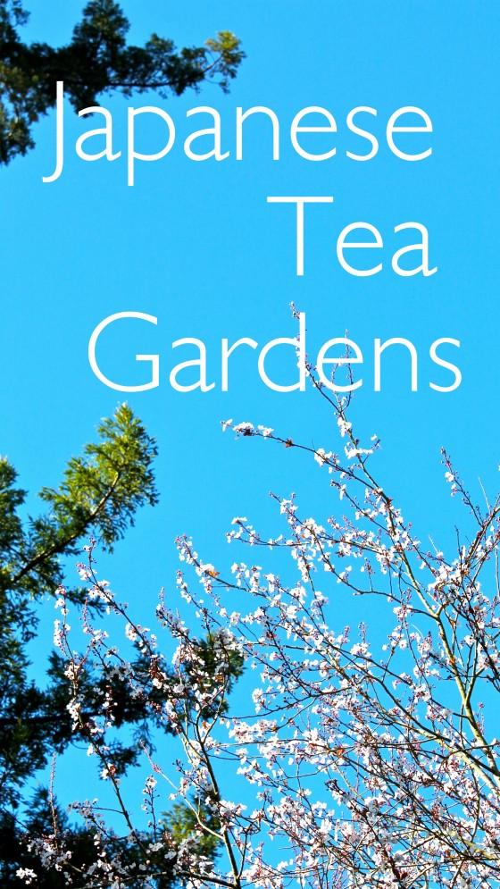 blog tea garden2