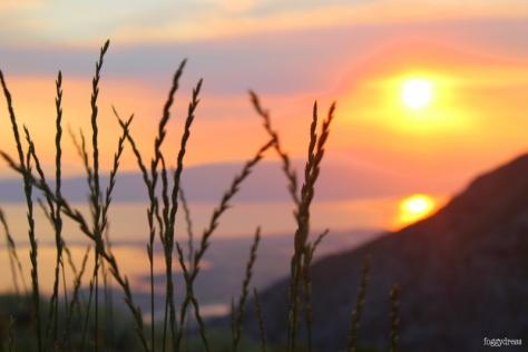 foggydress_sunsets