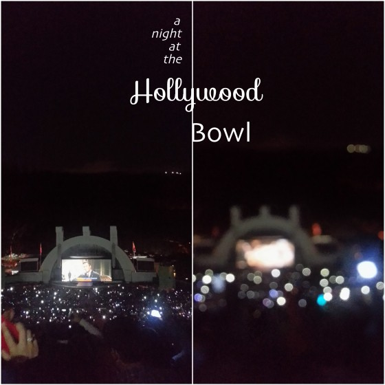 foggydress_hollywoodbowl